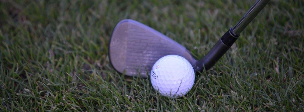 ball am hosel - Differenzielles Lernen im Golf