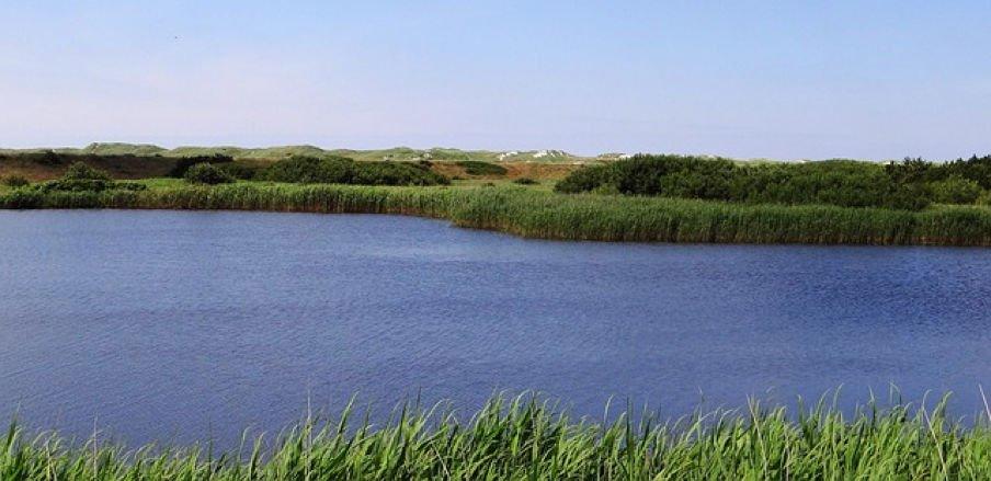 dejbjerg golf - Golfurlaub: Die schönsten Plätze in Schweden und Dänemark