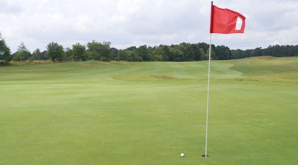 Die Fahne kennzeichnet das Loch