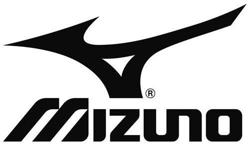 Mizuno Eisen Golfschläger